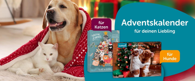 Tierischer Adventskalender