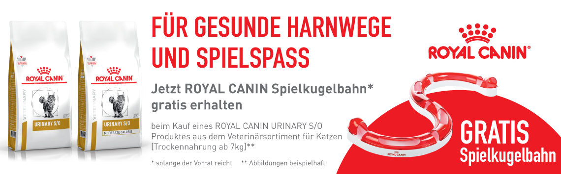 Royal Canin + Kugelbahn gratis