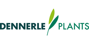 Dennerle Plants