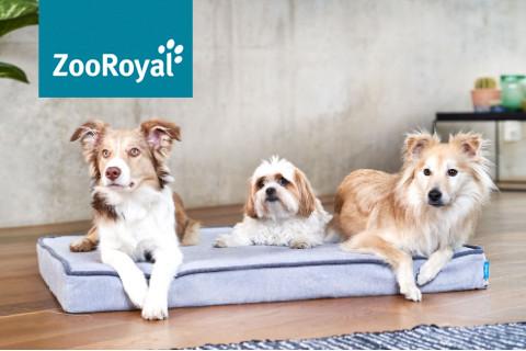 ZooRoyal Grey Kollektion für den Hund entdecken