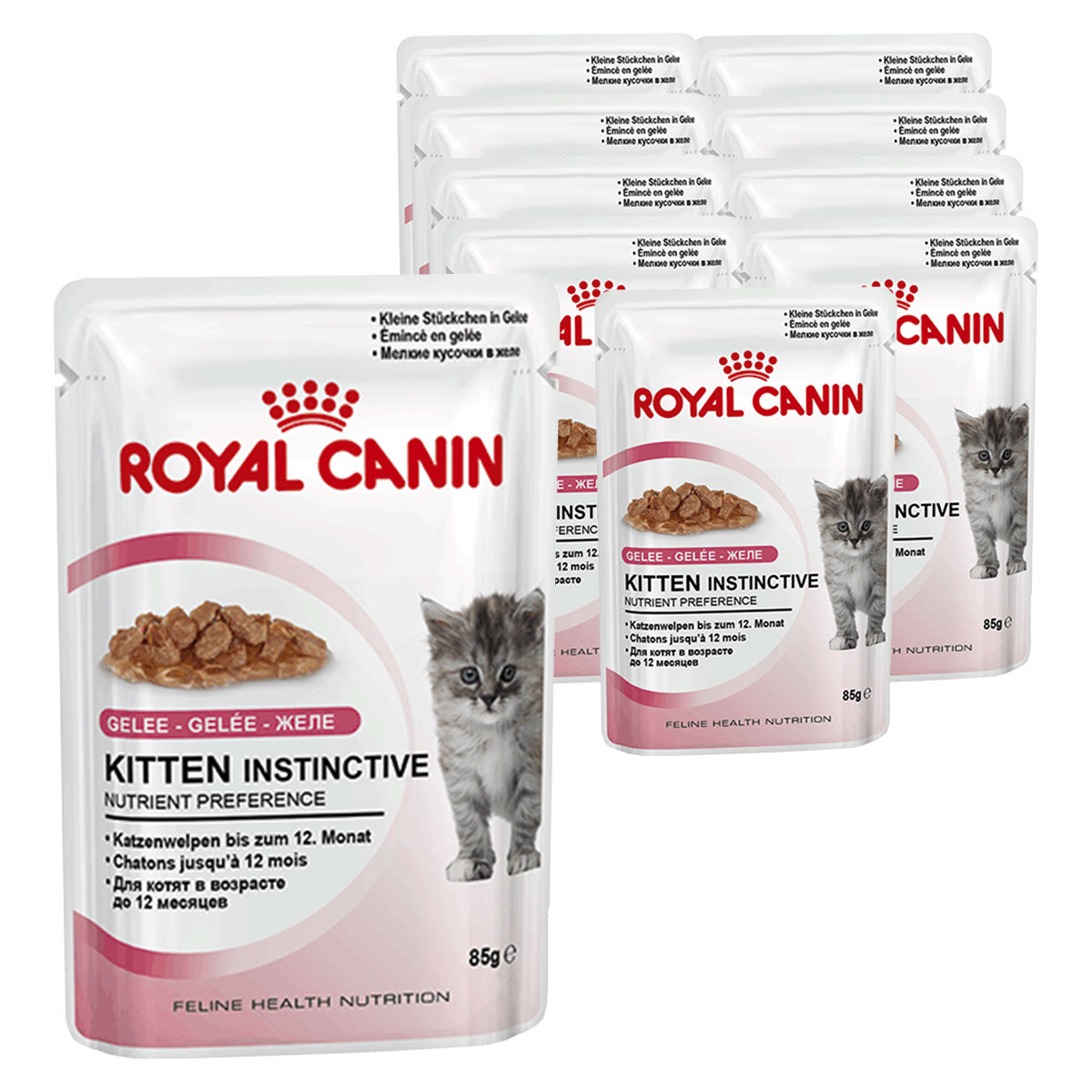 royal canin feline breed nutrition wet british shorthair adult 12x85g bunte. Black Bedroom Furniture Sets. Home Design Ideas