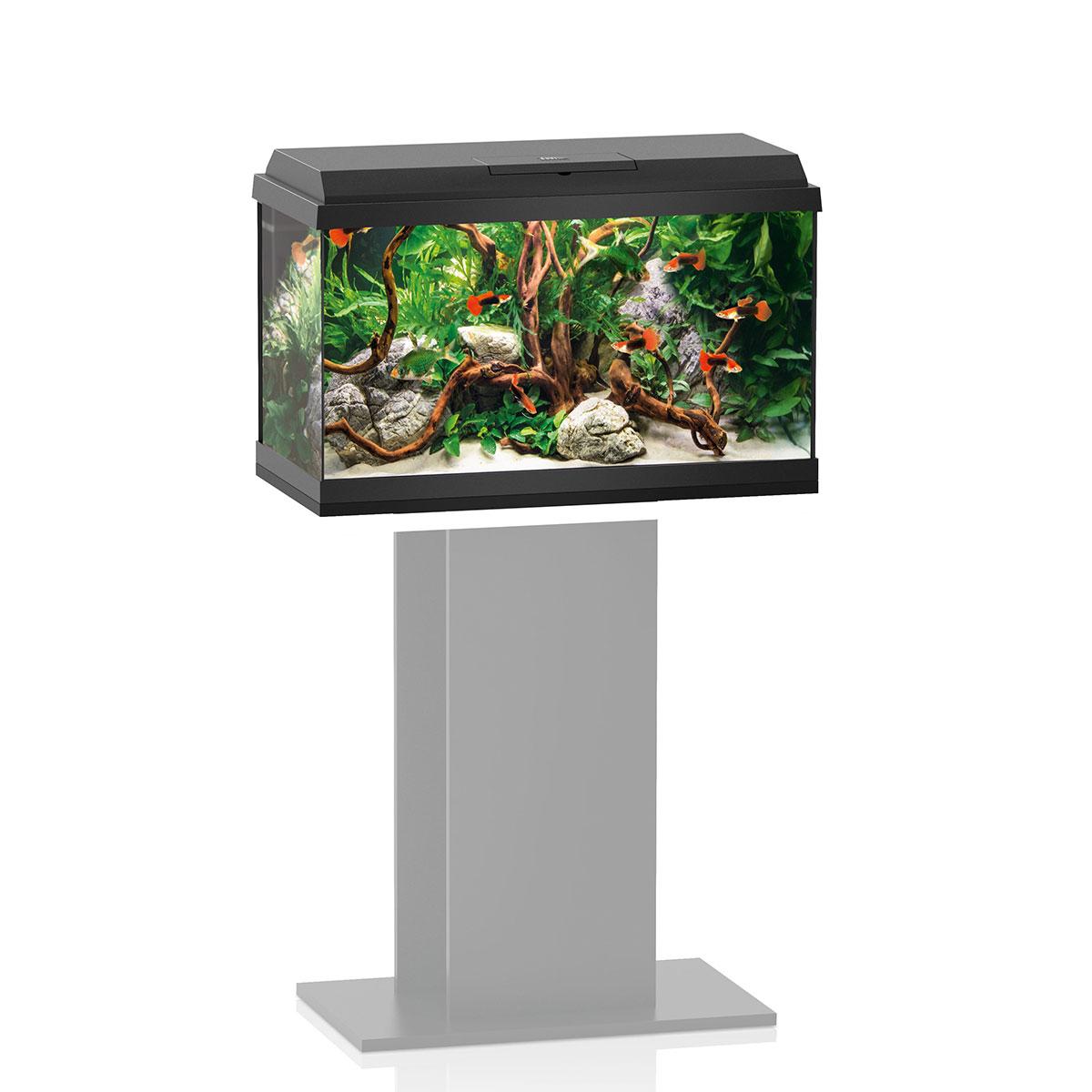 juwel aquarium primo 60 schwarz g nstig kaufen bei zooroyal. Black Bedroom Furniture Sets. Home Design Ideas
