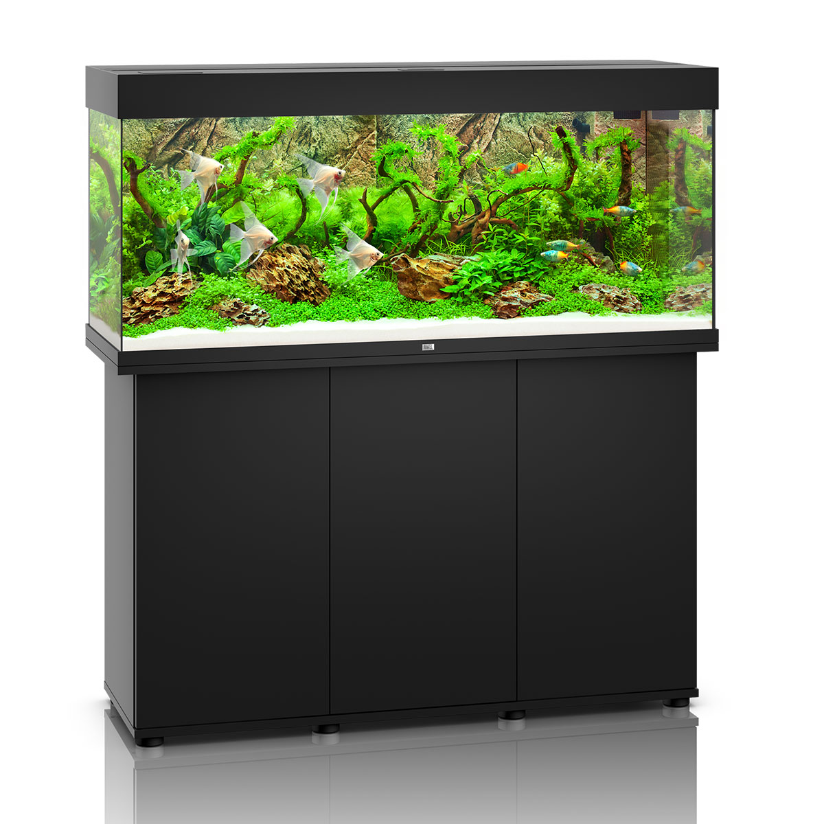 juwel rio 240 led komplett aquarium mit unterschrank sbx. Black Bedroom Furniture Sets. Home Design Ideas