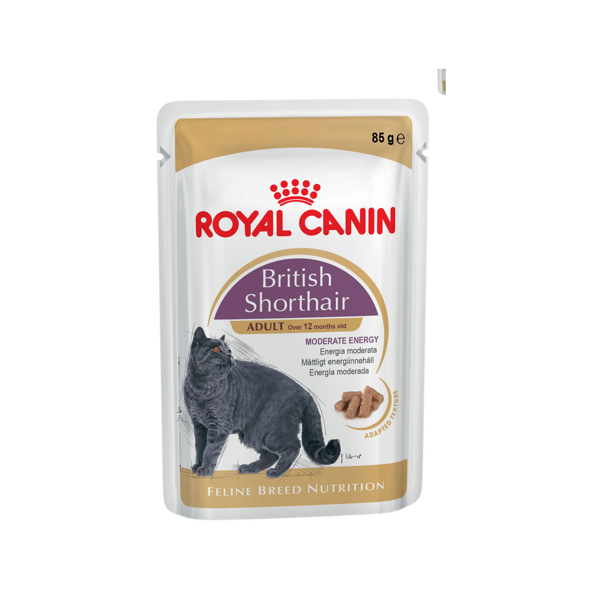 royal canin feline breed nutrition british shorthair 12x85g. Black Bedroom Furniture Sets. Home Design Ideas