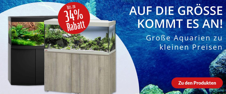 Große Aquarien im Angebot