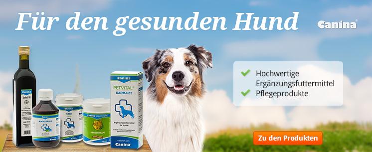 Neu: Drogieriartikel für Ihren Hund von Canina Pharma