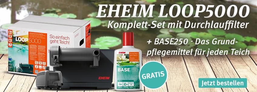 Eheim Loop5000 + Base250 gratis