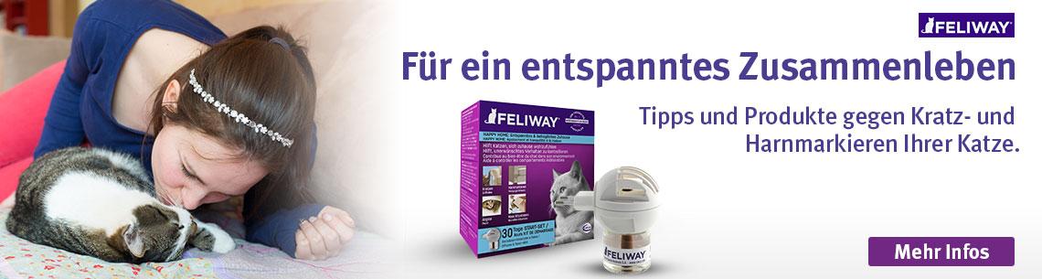 Feliway entspannt