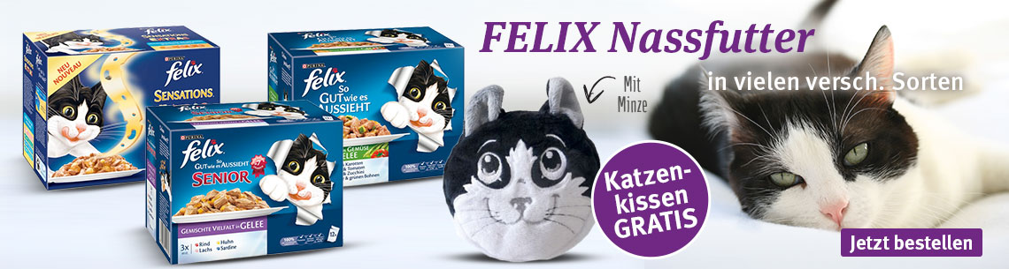 Felix Nassfutter plus Katzenkissen
