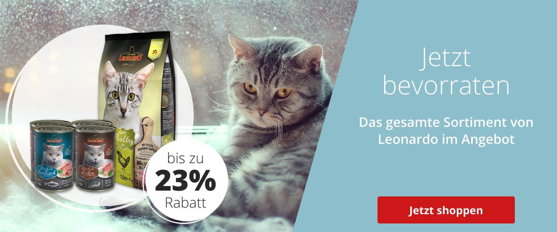 Leonardo bis zu 23% günstiger