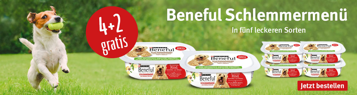 Beneful 4 plus 2 gratis