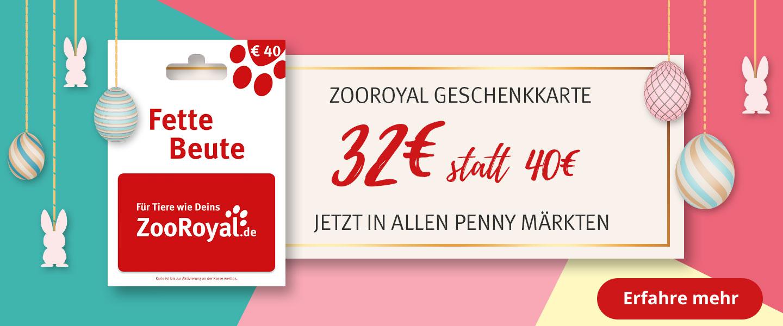 Die ZooRoyal Geschenkkarte im Angebot in allen Penny Märkten