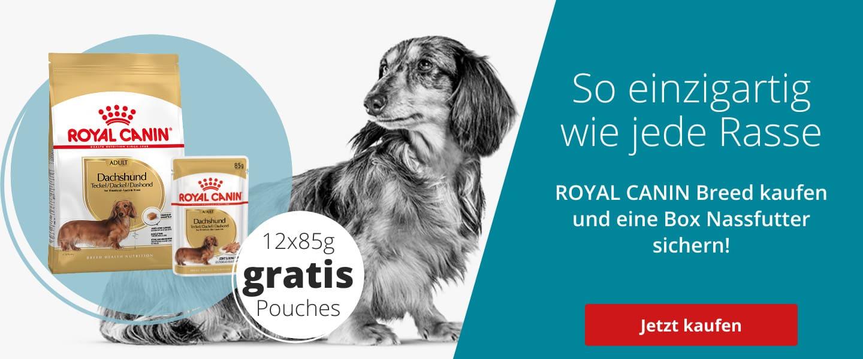 Royal Canin Mischfütterung