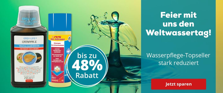 Angebote zum Weltwassertag