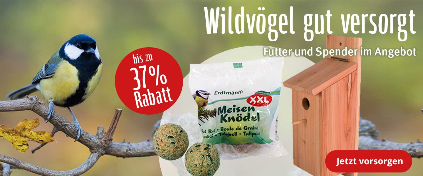 Wildvögel gut versorgt!