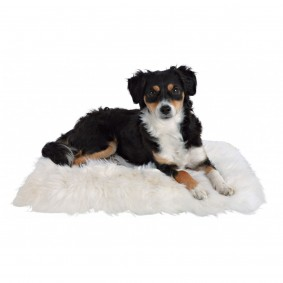 Coussin en peau de mouton pour chiens et chats