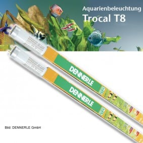 Dennerle Trocal de Luxe T8 Special Plant DUO