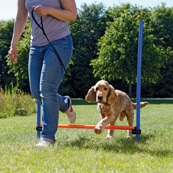 Trixie Dog Activity Agility Hürde