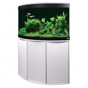 aquarium aquarien g nstig kaufen bei zooroyal. Black Bedroom Furniture Sets. Home Design Ideas
