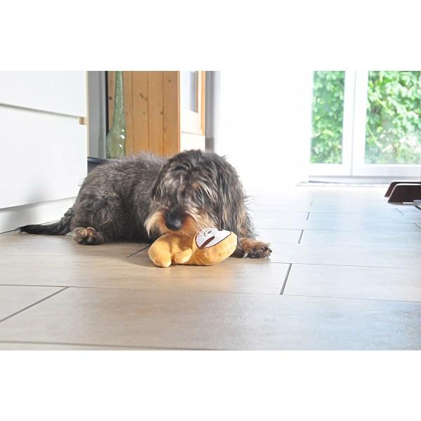 Aumüller Faultier Fips Hundespielzeug mit Dinkelspelz-Knisterfüllung