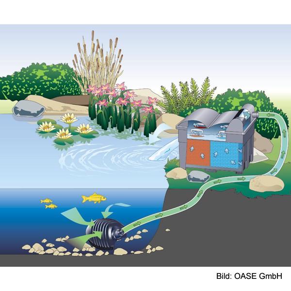 Oase Teichfilter BioSmart 16000 UVC