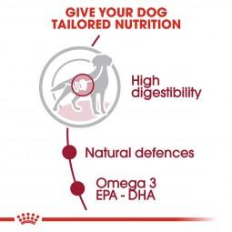 ROYAL CANIN MEDIUM Adult Nassfutter für mittelgroße Hunde