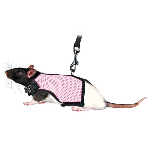Trixie Softgeschirr für kleine Meerschweinchen & Ratten