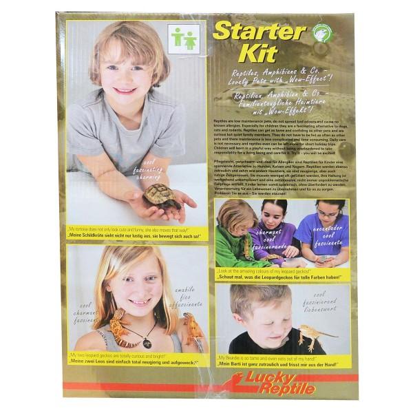 """Lucky Reptile Terrarium Starter Kit 50 cm """"Wüstengecko"""""""