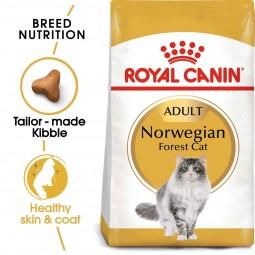 ROYAL CANIN Norwegian Forest Cat Adult pro norské lesní kočky