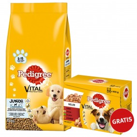 Pedigree Vital Protection Junior Medium mit Huhn & Reis 15kg plus Multipack Gelee 12x100g GRATIS