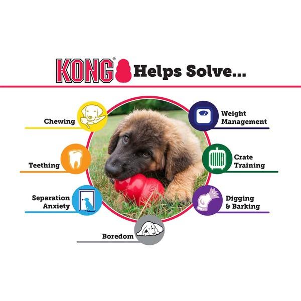 KONG Puppy M