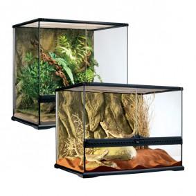 regenwaldterrarium kaufen. Black Bedroom Furniture Sets. Home Design Ideas