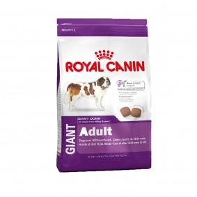 Royal Canin Giant - Croquettes pour chiens de grandes races