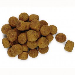 Hill's Science Plan Canine Healthy Development Puppy Medium mit Huhn 12 kg
