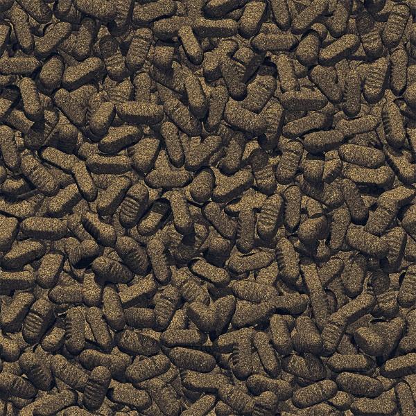 JBL ProPond Silkworms Seidenraupen für Koi 1,0 kg