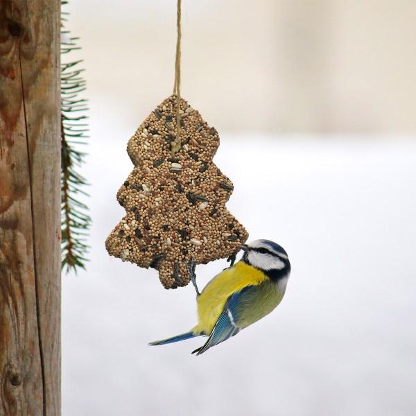 ZooRoyal Futtertanne für Wildvögel