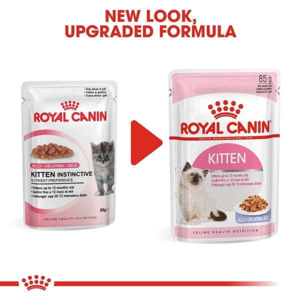 ROYAL CANIN KITTEN Nassfutter in Gelee für Kätzchen