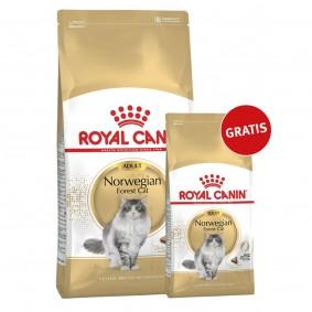 Royal Canin Katzenfutter Norwegische Waldkatze 10kg+2kg gratis