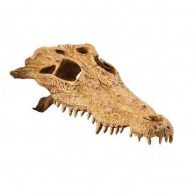 Hagen Exo Terra Crocodile Skull Terrariendekoration