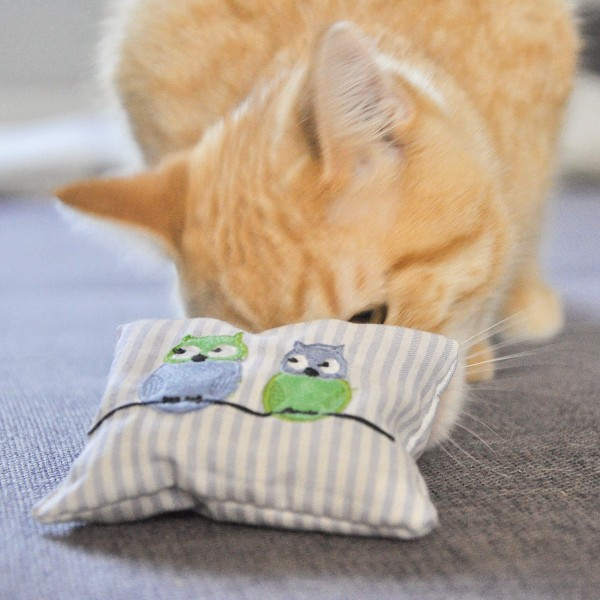 Aumüller Katzenspielkissen Eule Lilo mit Baldrian und Dinkelspelz