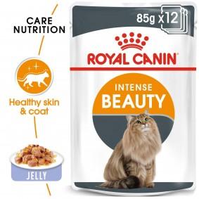 ROYAL CANIN Intense Beauty Katzenfutter nass in Gelee für schönes Fell 12x85g