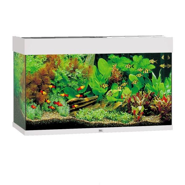 Aquarium Rio 125 ohne Schrank - Weiß
