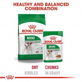 ROYAL CANIN Mini Adult 4kg + Mini Adult in Soße 12x85g