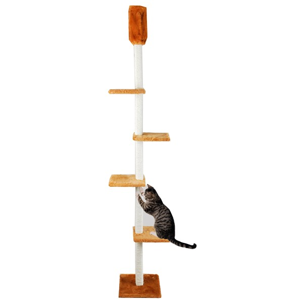 Cat Dream Kratzbaum raumhoch - honig