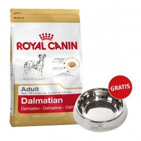 Royal Canin Dalmatian Adult 12kg + Edelstahlnapf silber gratis