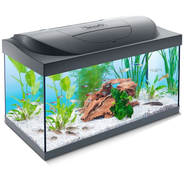 Tetra Capt'n Sharky LED Aquarium 54l