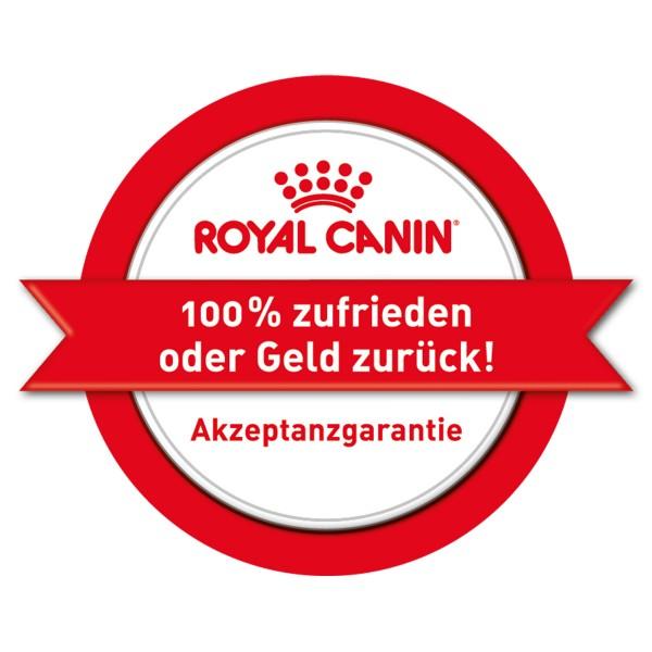 Royal Canin Vet Diet Urinary S/O Hund - Mousse