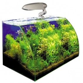 Wave Box Nano Aquarium Vision