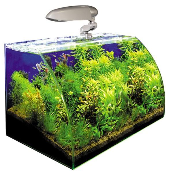 Wave Box Nano Aquarium Vision