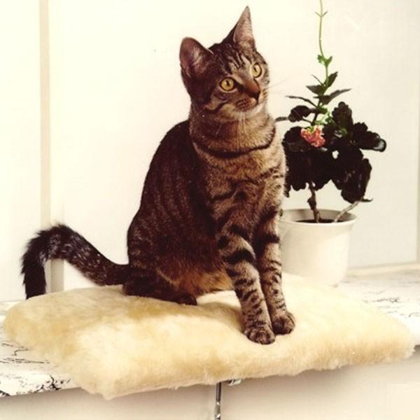 Silvio Design Fensterliege für Katzen